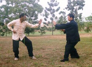Tai Chi Chuan for play or combat?